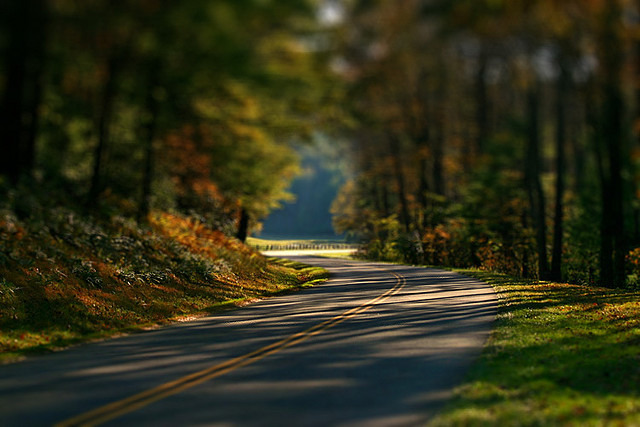Take a Drive Down the Blue Ridge Parkway