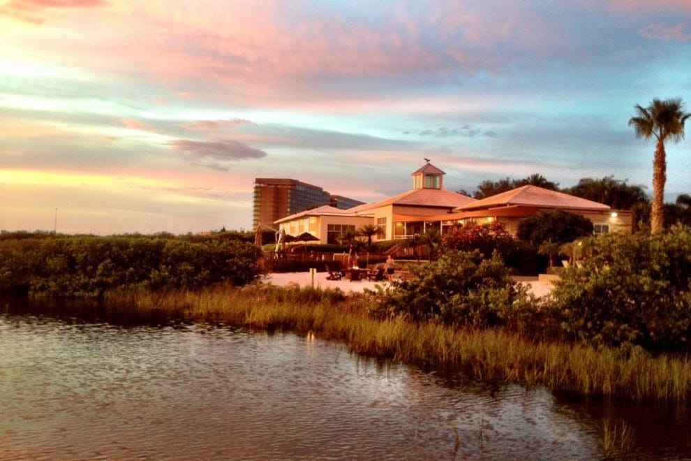 Oystercatchers Tampa Restaurants Review 10best Experts