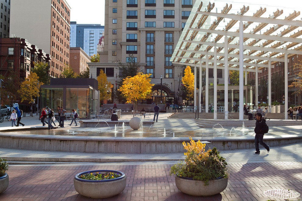 Director Park