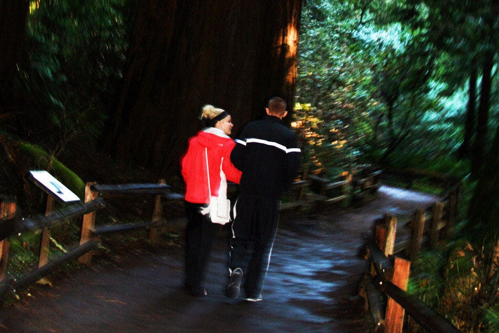 Couples Bond Under the Romantic Canopy of the Giant Redwoods