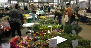 Niagara's St. Catharines Farmers Market is Ideal Saturday Spot