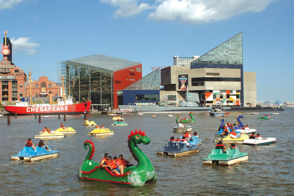 Paddleboats in Inner Harbor