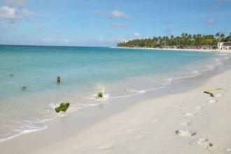 阿鲁巴最好的海滩和海湾,浮潜,冲浪或日光浴