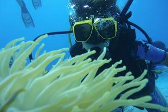 潜水和浮潜冒险在阿鲁巴为新手和主人