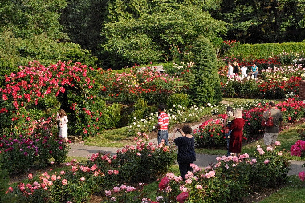 Best portland attractions and activities top 10best attraction reviews for The gardens of the american rose center