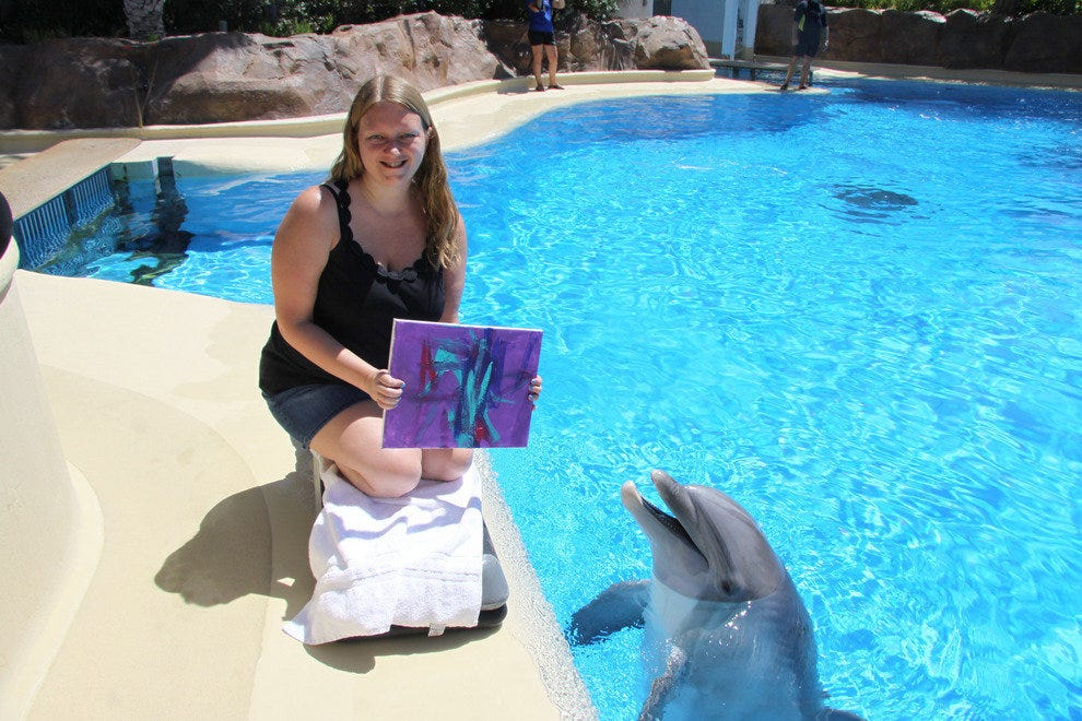 Participants are given a souvenir photo showcasing their finished painting alongside the dolphin that helped paint it