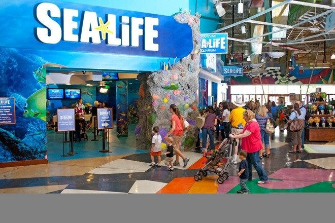 Grapevine Mills: Dallas Shopping Review - 10Best Experts and Tourist ...