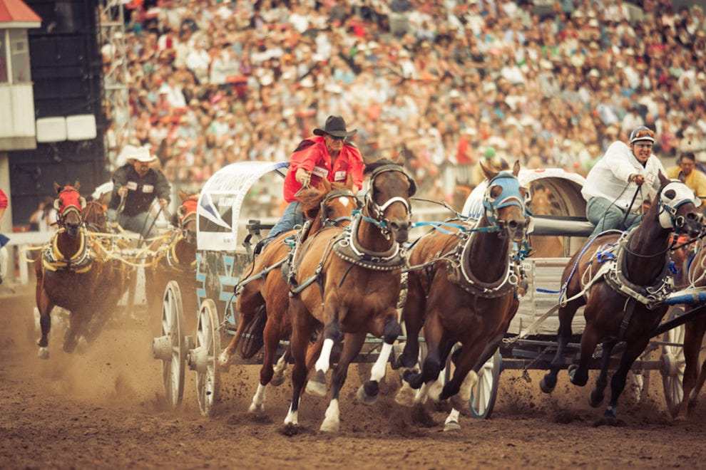 Chuckwagons kick up dust during the annual derby