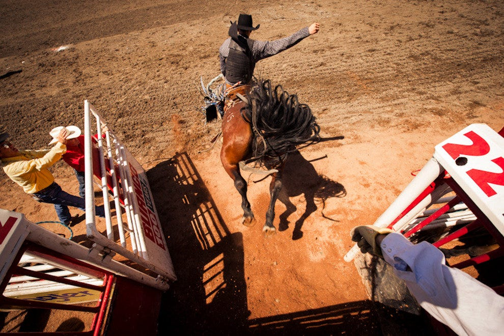 A rodeo competitor comes out of the gates.