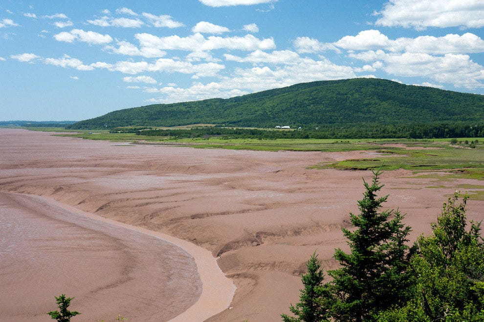 Daniels Mudflats in the Bay of Fundy, near Hopewell Rocks