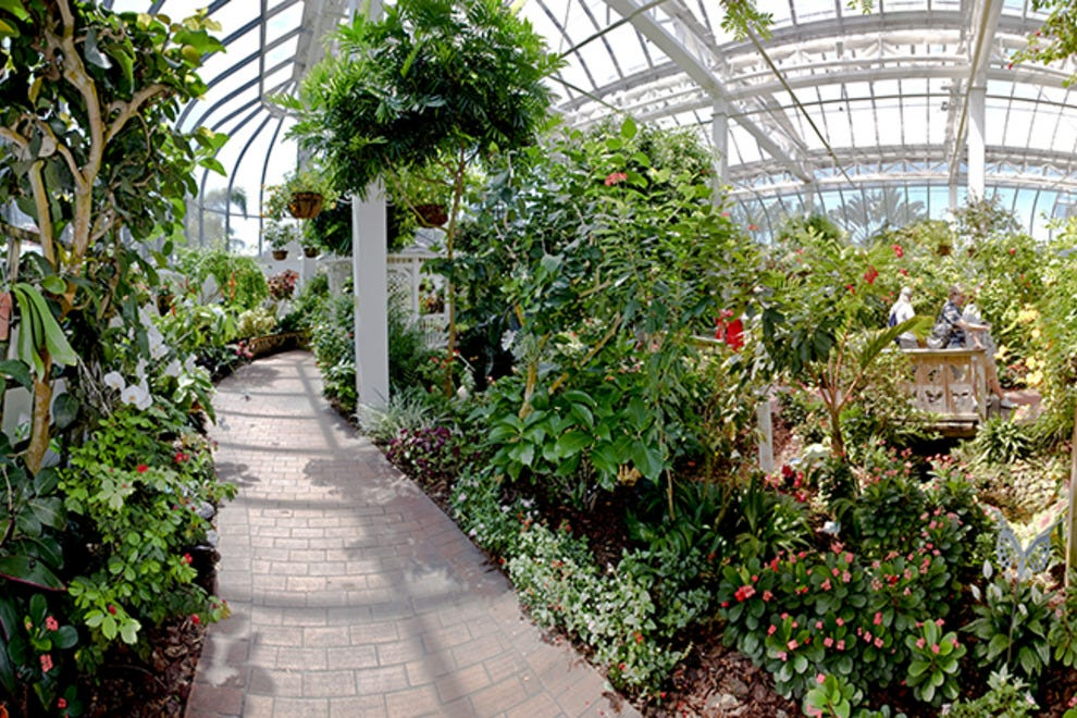 The Butterfly Conservatory Spot In New York