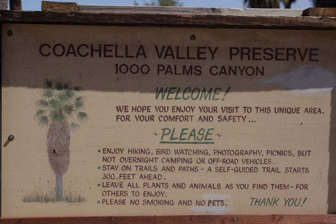 Coachella Valley Preserve: Palm Springs Attractions Review