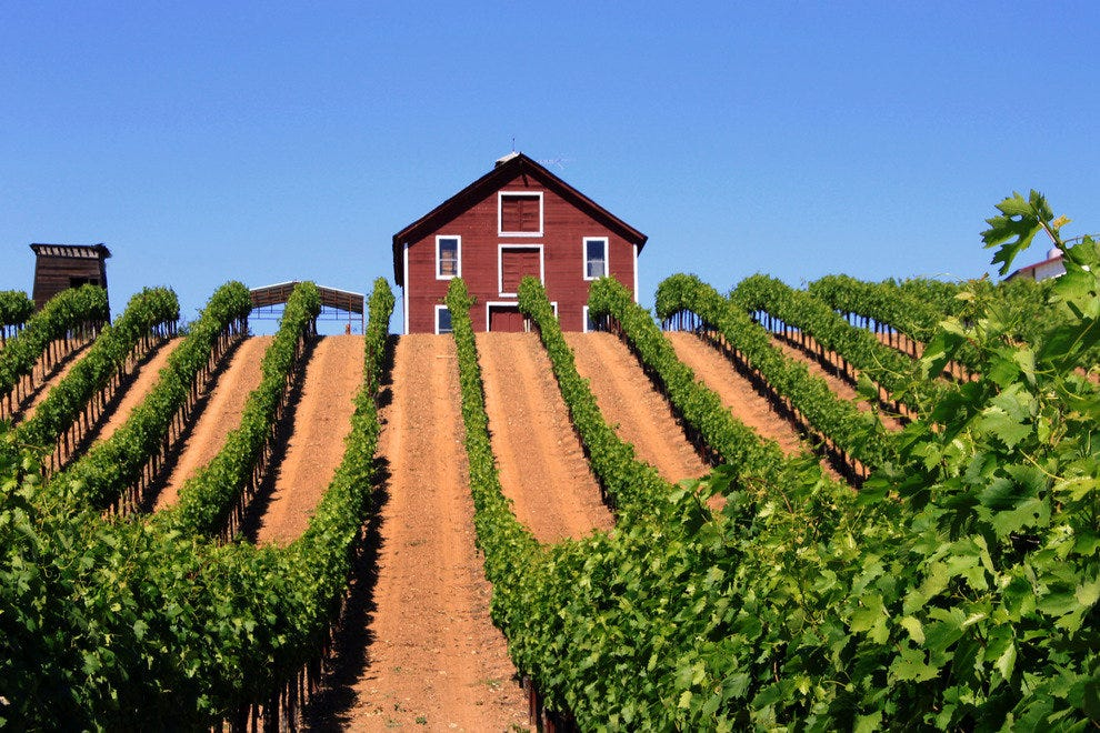 Picturesque Vineyard in Sonoma County's Alexander Valley