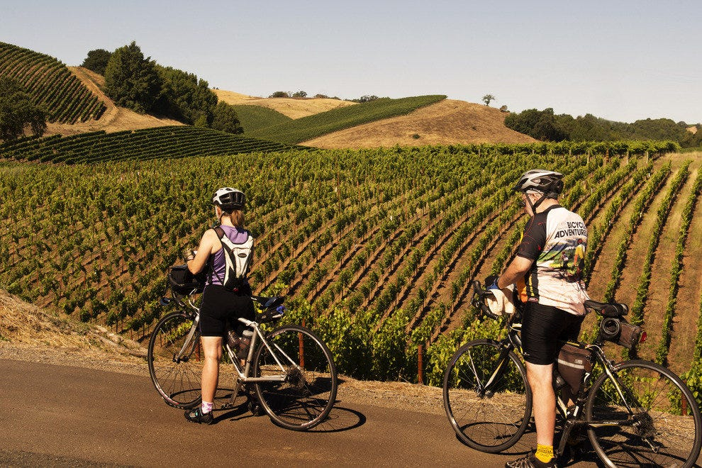 Bicyclists on Tour of Dry Creek Valley