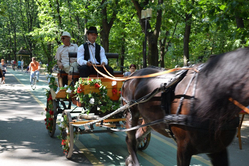 Sentineal Horse & Carriage