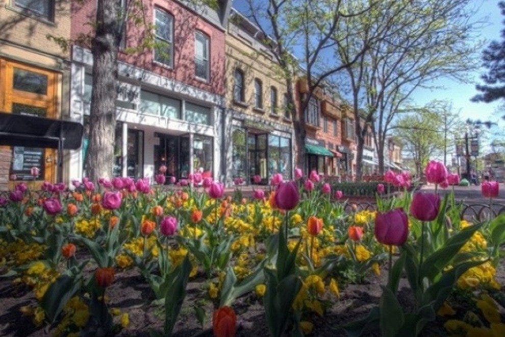 Spring is beautiful on Pearl Street