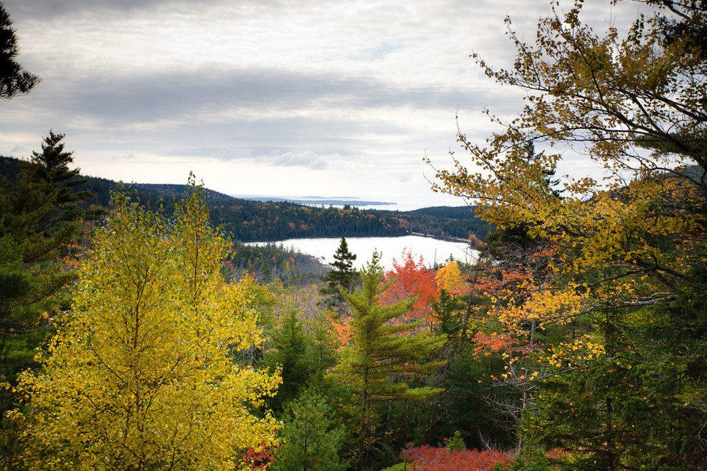 Acadia National Park in autumn