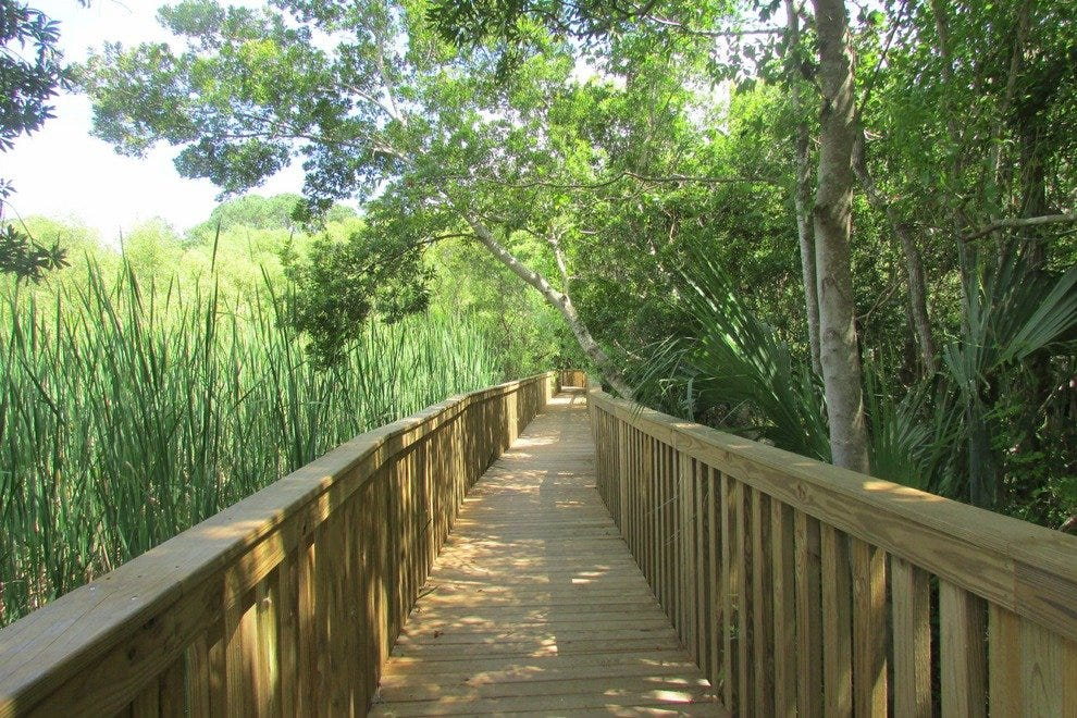 A wooden bridge takes hikers through an old rice field at the Sea Pines Forest Preserve.