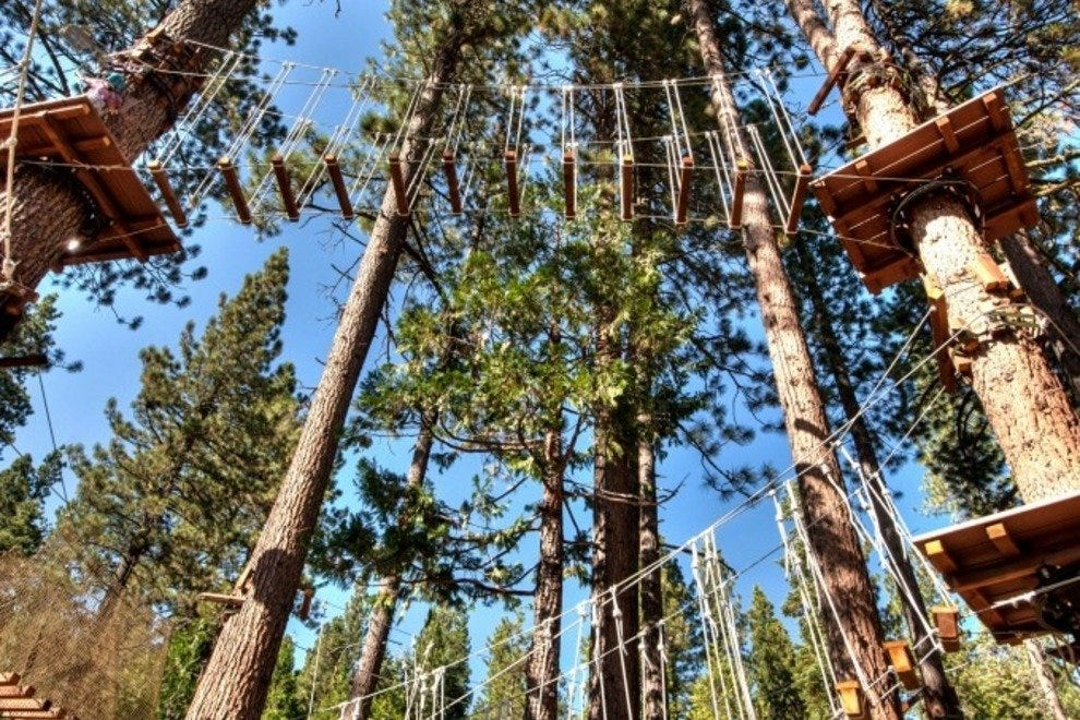 The Flying Squirrel ropes course at Tahoe Treetop Adventure Park