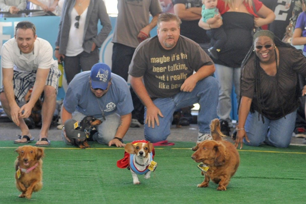 Denver Oktoberfest Long Dog Derby