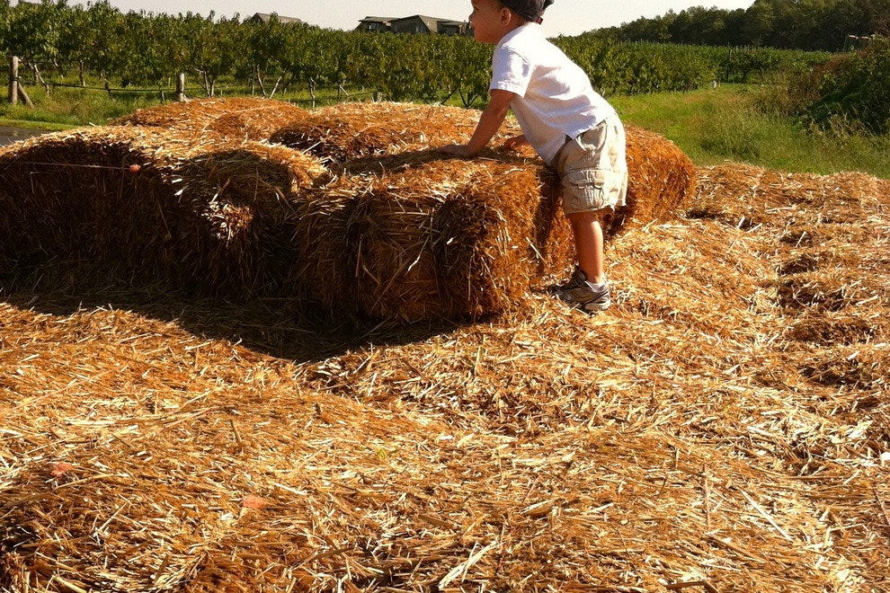 Climbing the haystack