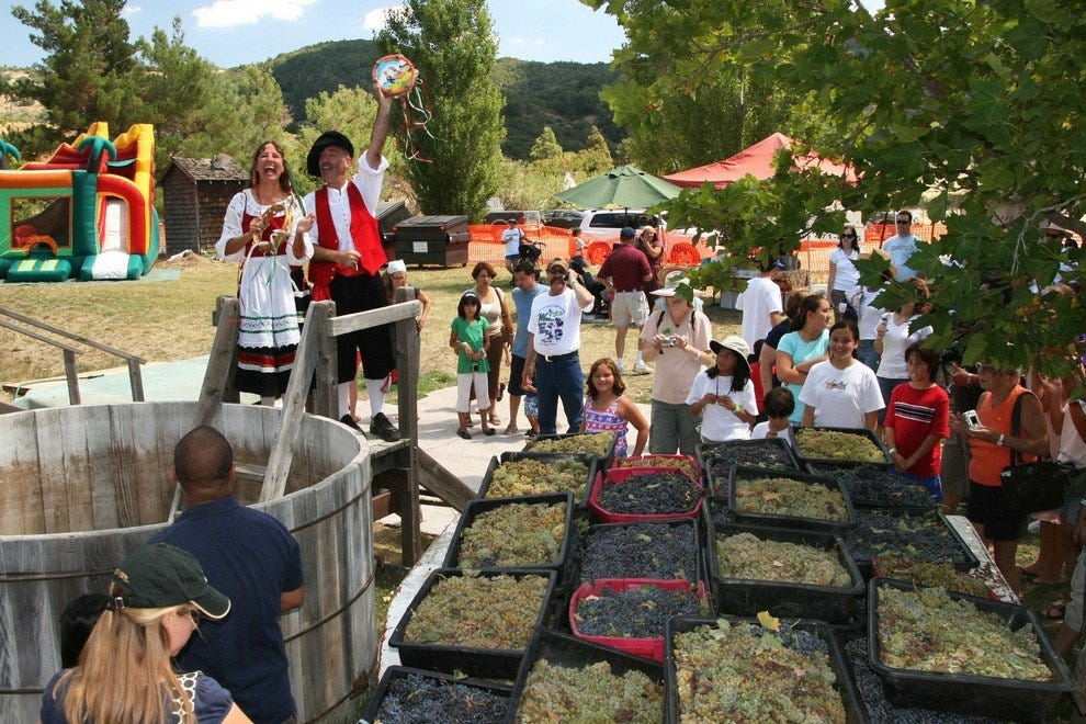 Stomp grapes Italian-style at Julian's annual grape stomp festival event at Menghini Winery.