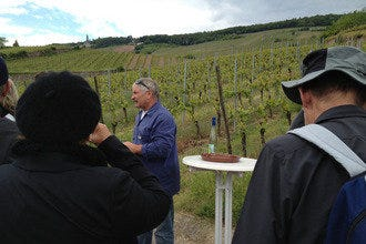 Bike & Wine Tour (Niagara Gateway Tours)