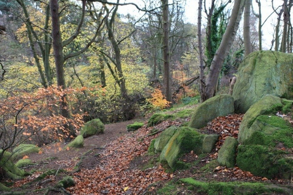 Corstorphine Hill