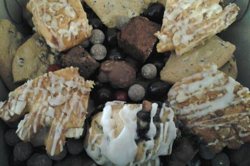 巧克力鬣蜥