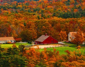 Beautiful Barns and Where to See Them