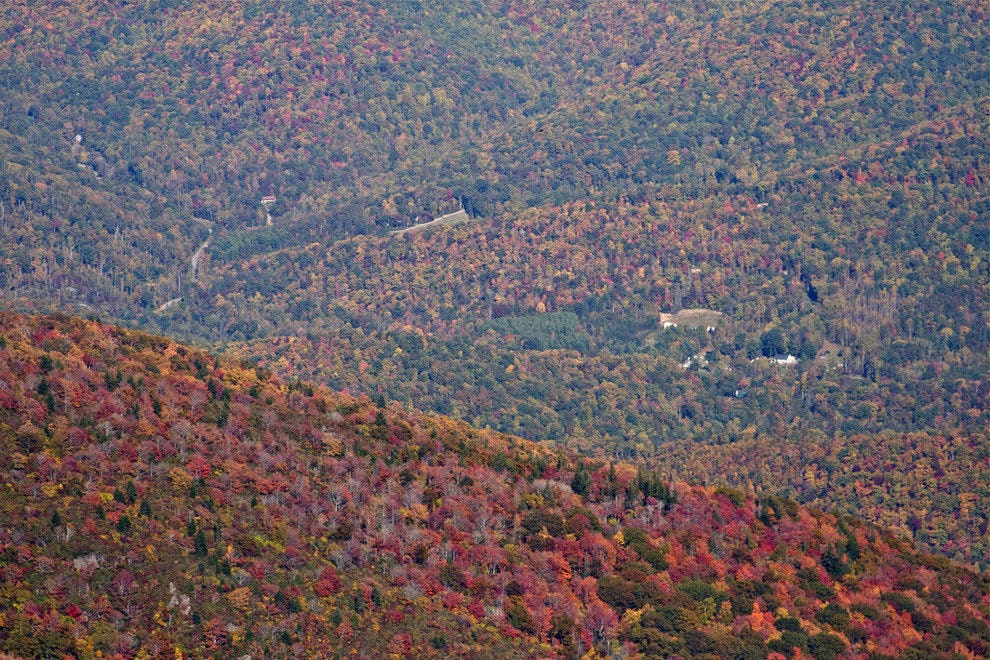 Scenic Drives and Great Food in Asheville, North Carolina