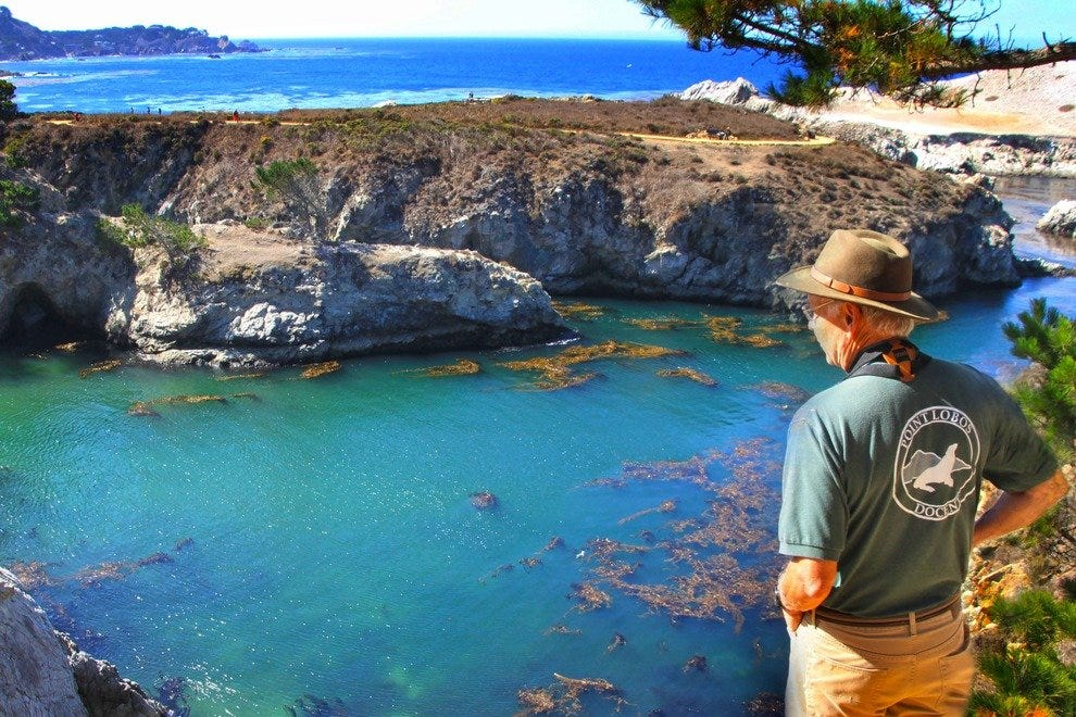 View on the crystal clear lagoons of Point Lobos State Reserve