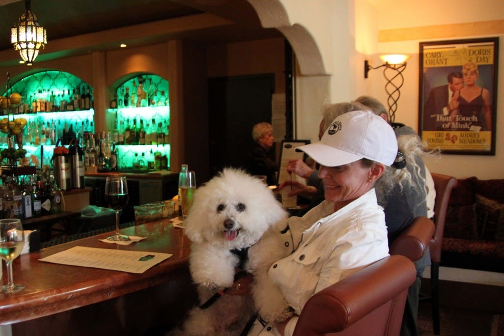 The bar at the Cypress Inn hotel welcomes guests' four-footed friends.