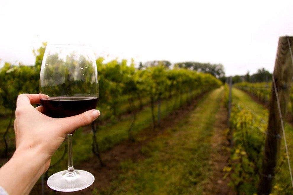 Image result for niagara wine trail