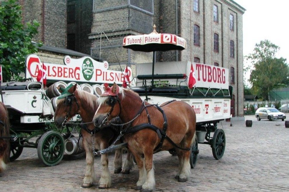 The dray horses of the Brewery stables are one of the most popular attractions on the tour