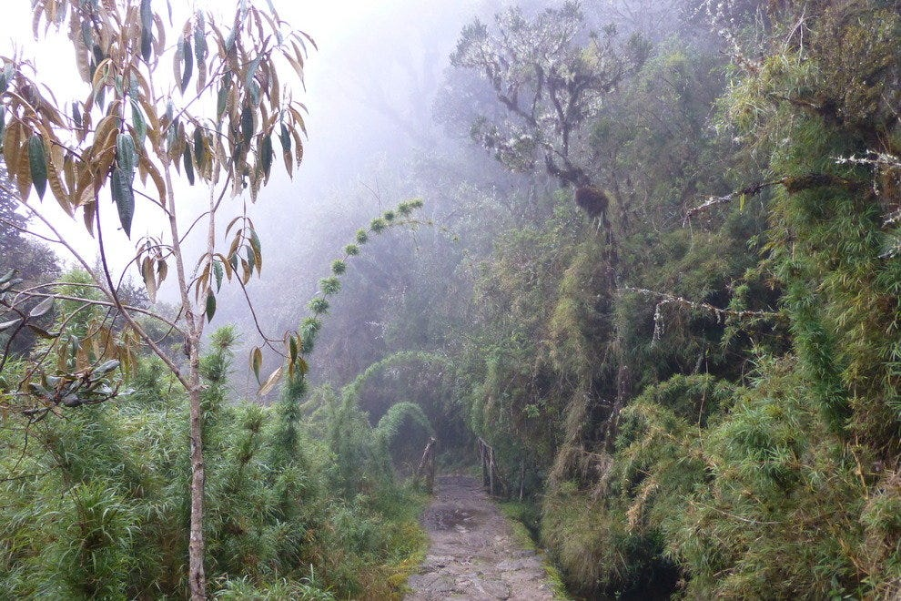 Hiking along the Inca Trail.