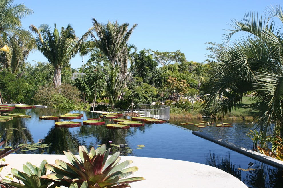 Naples attractions and activities attraction reviews by - Botanical gardens naples florida ...