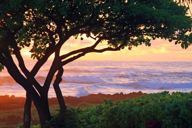 Beachfront Dining Restaurants In Kauai
