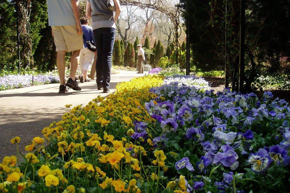 Nashville outdoor activities 10best outdoors reviews - Cheekwood botanical garden and museum of art ...