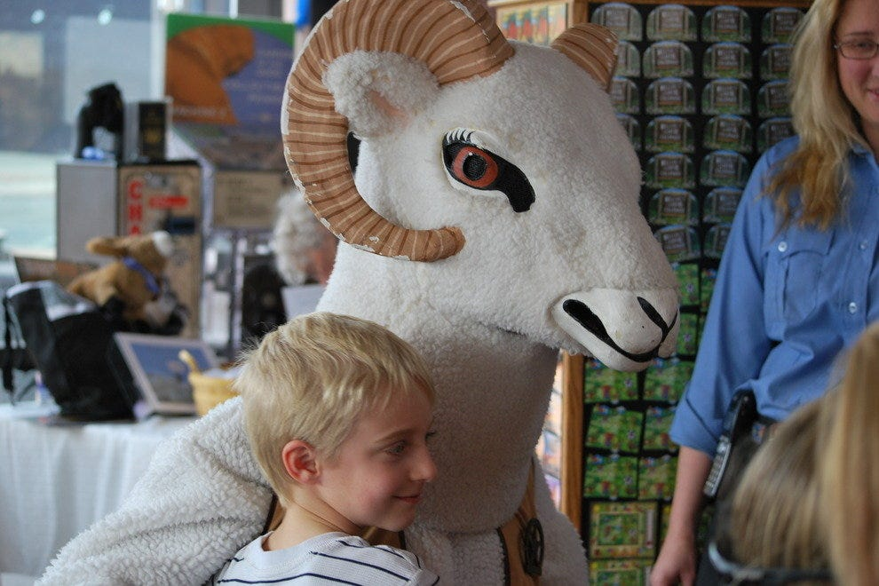 Georgetown Bighorn Sheep Festival - November 8