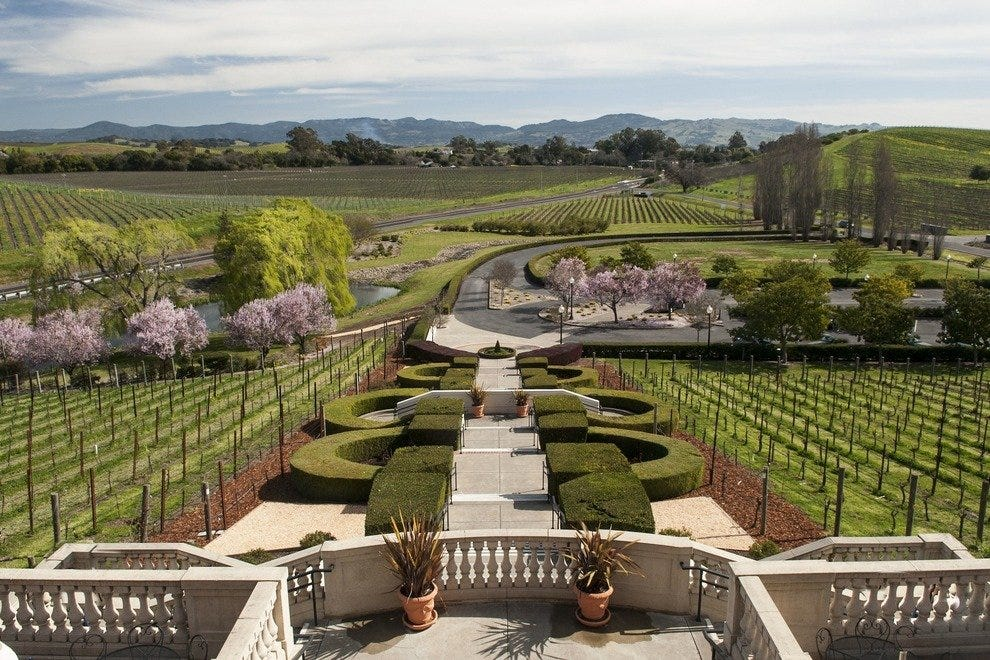 Sweeping views of vineyards greet the patio crowd at Domaine Carneros.