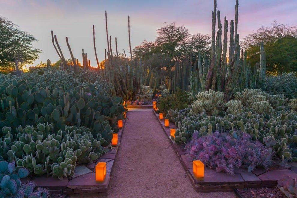 Phoenix Christmas Lights