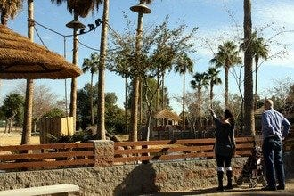 Phoenix Zoo Phoenix Attractions Review 10Best Experts and Tourist