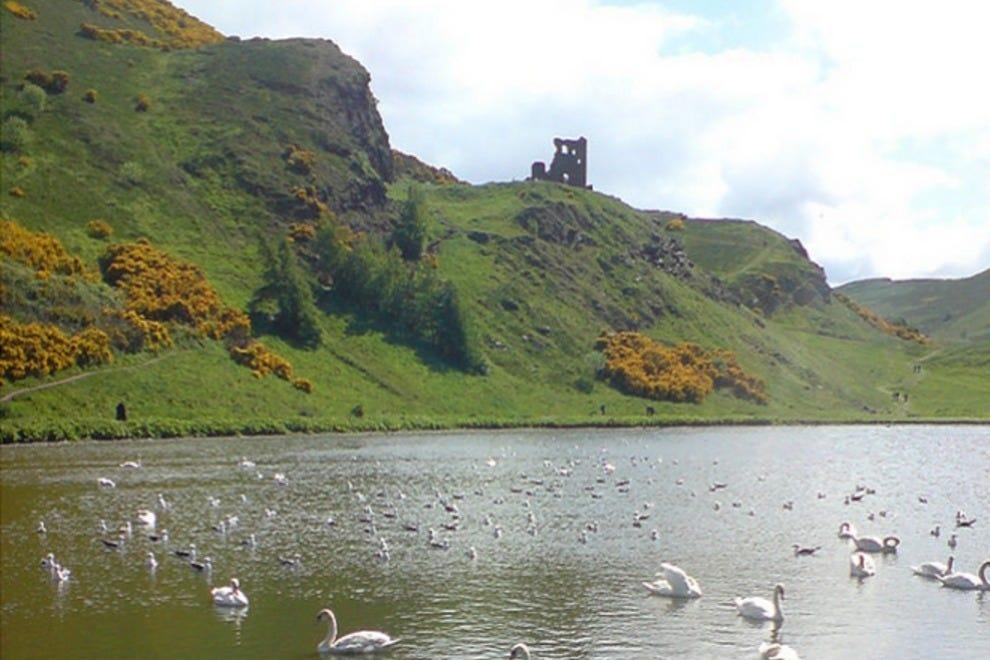 Enjoy a Scenic Drive around Edinburgh: [CITY] Tours ...