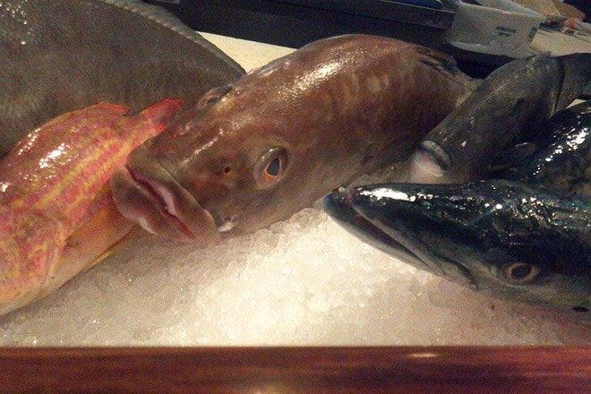 Seafood Restaurants on Sanibel in Fort Myers