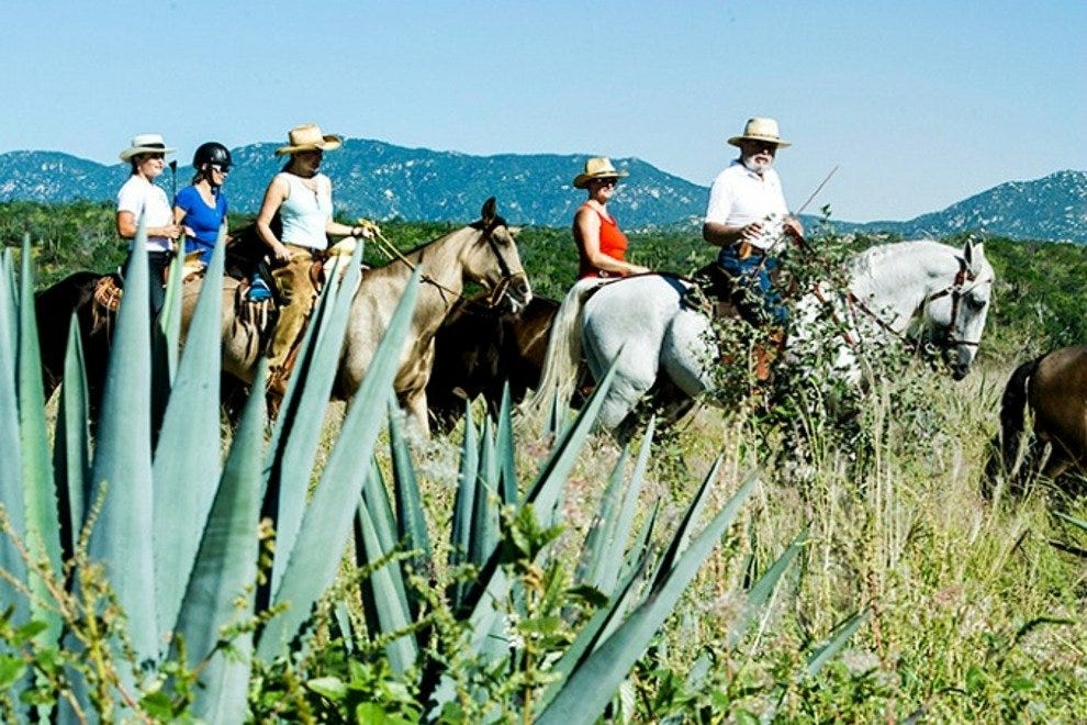 Los Cabos' only equestrian center offers scenic trail rides over a variety of terrains