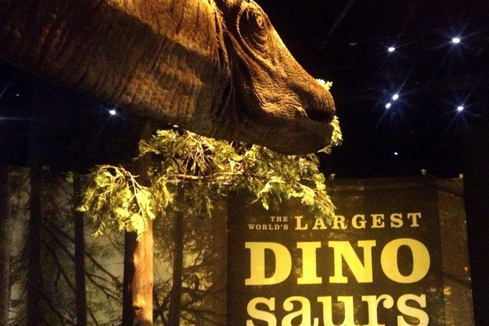 The World's Largest Dinosaurs