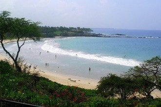 The Big Island's best beaches provide exotic wildlife, snorkeling, surfing, lava rock and black sand