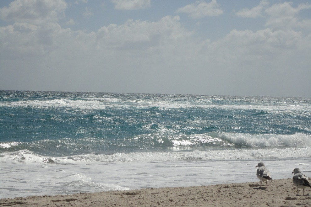 Palm Beach West Palm Beach Beaches 10best Beach Reviews