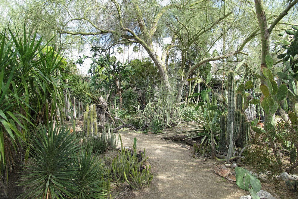 Moorten Botanical Garden Palm Springs Attractions Review 10best Experts And Tourist Reviews